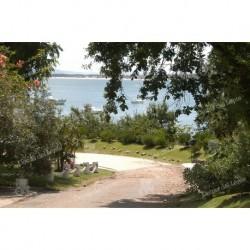 Caminos en Punta Ballena