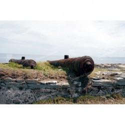 Isla de Gorriti, cañones históricos