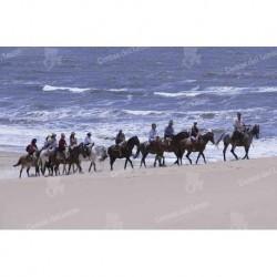 Cabo Polonio cabalgatas sobre la costa